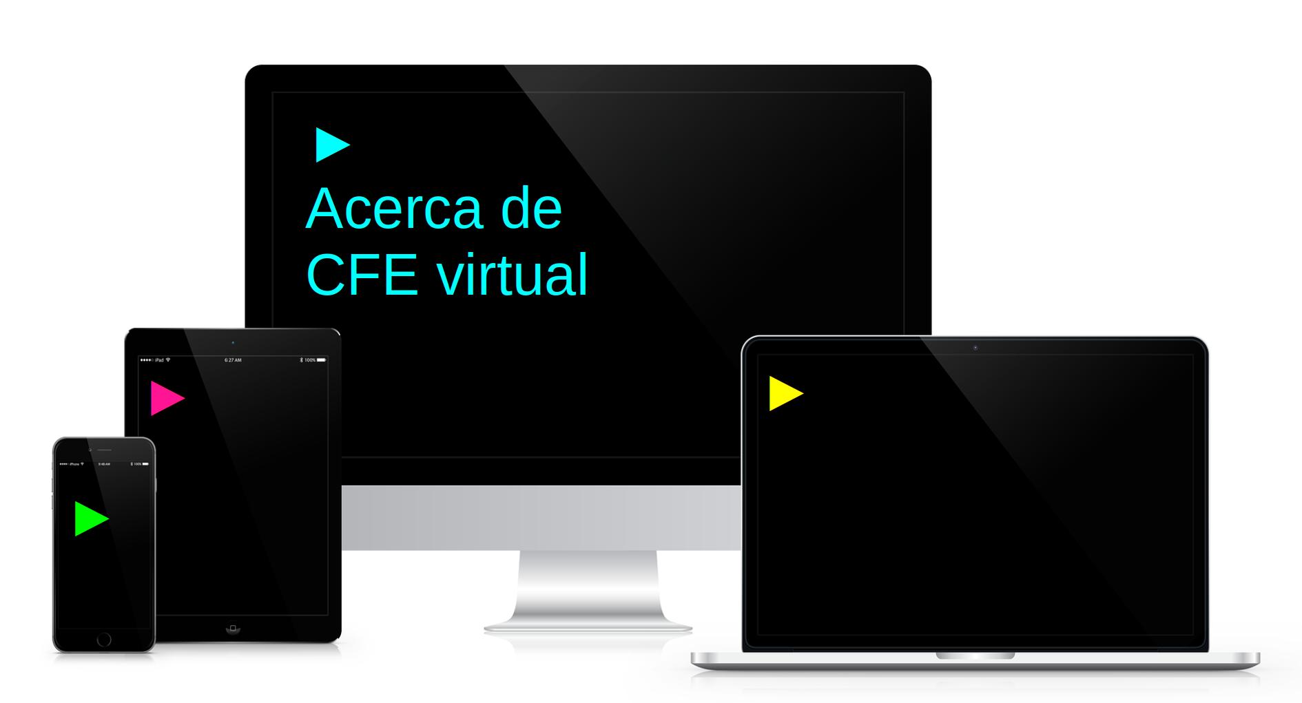 Acerca de CFE virtual